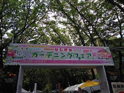 IMG_20170527_105241.jpg