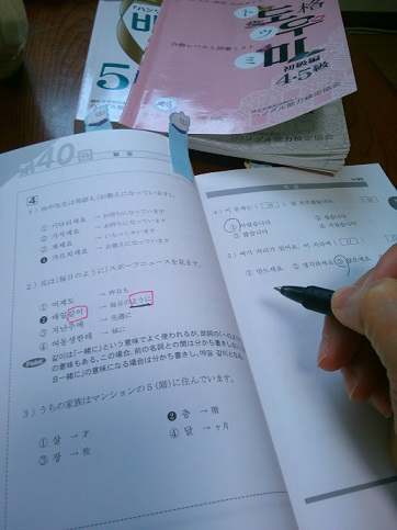 KIMG0166 - コピー.JPG